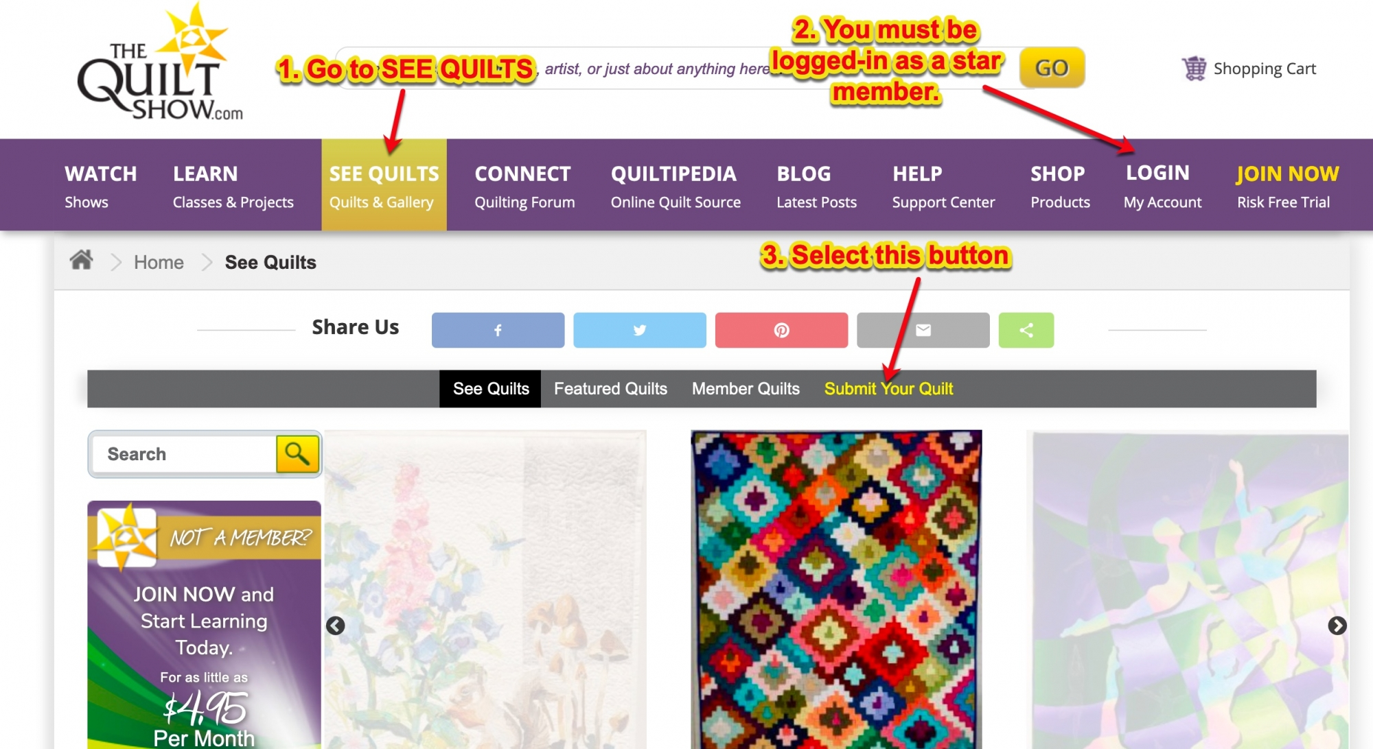 FAQs Upload Quilts 1.jpg