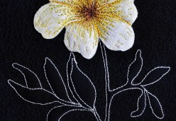 Thread Painting - Project 04 - Flowers of the Night
