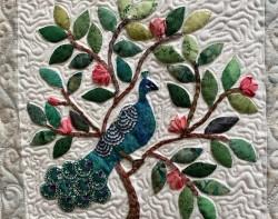 wendy-grande-americana-peacock