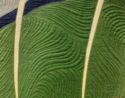 Caryl-bjg-Lepidopteran-5-detail1