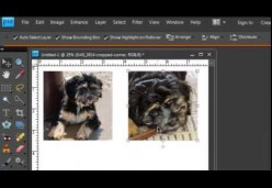 Printing on Fabric - Lesson 04 - Printing Multiple Photos