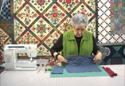 Sharon Pederson - Lesson 13 - Hanging Sleeves