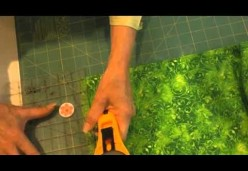 Machine and Hand Appliqué - Lesson 03 - Straight Stems