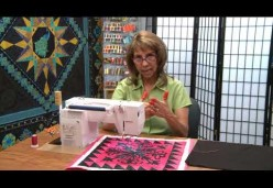 30 Tips and Tricks for Better Machine Quilting with Cindy Seitz-Krug - Tip 08 - Echo Quilting
