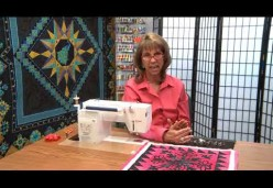 30 Tips and Tricks for Better Machine Quilting with Cindy Seitz-Krug - Tip 05 - You Need More Feet